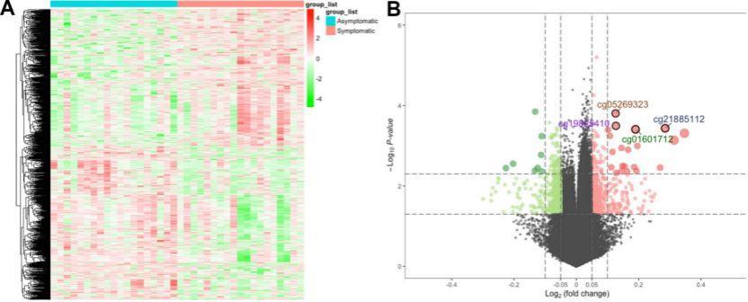 文献解读:纯生信分析疾病 缺血性中风甲基化调节因子-sci666