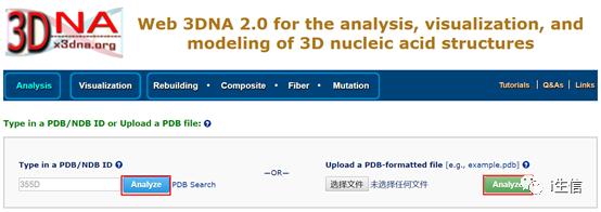 核酸3D建模 可视化、分析在线平台:Web 3DNA 2.0简介