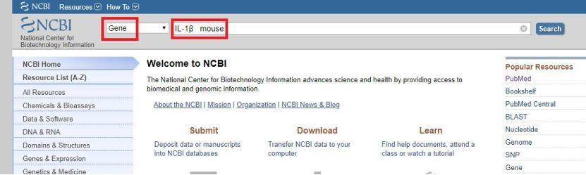 利用NCBI设计特异性PCR引物的方法-sci666