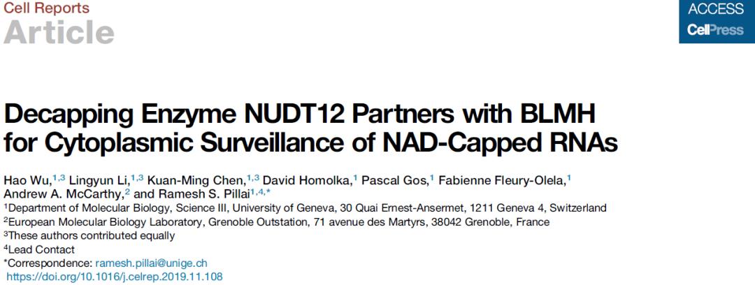 乌皓/李灵运等人发现新的烟酰胺腺嘌呤-RNA去帽酶(NUDT12)-sci666