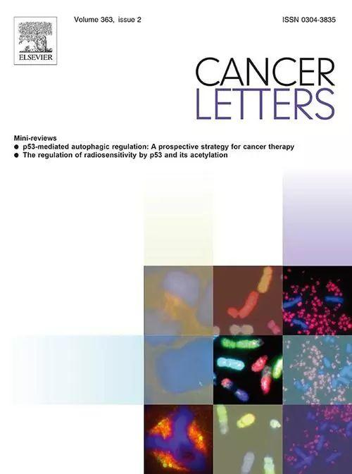 Cancer Letters影响因子6分的期刊解析-sci666
