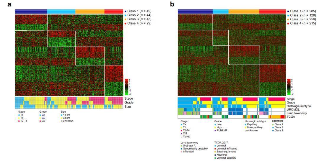 文献解读:膀胱癌免疫治疗亚型-sci666
