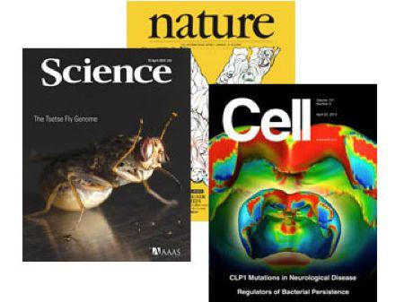 高仿Cell的Cells杂志,影响因子5.6分 不妨一投