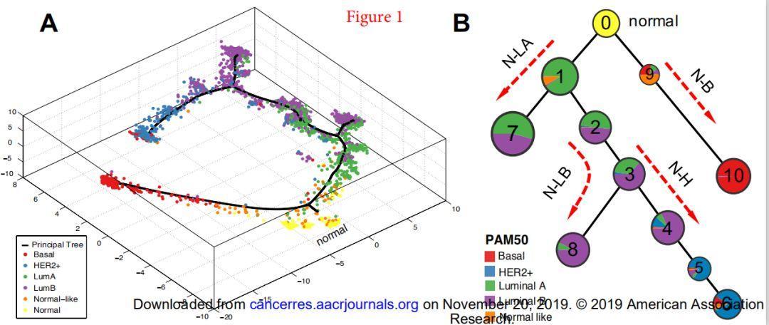 文献解读:揭示肿瘤进展变化-乳腺癌进展模型-sci666