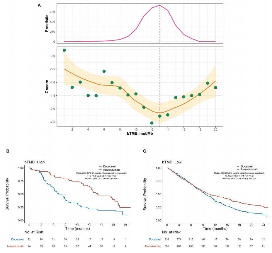 文献解读:肿瘤突变负荷TMB-分组预后-sci666