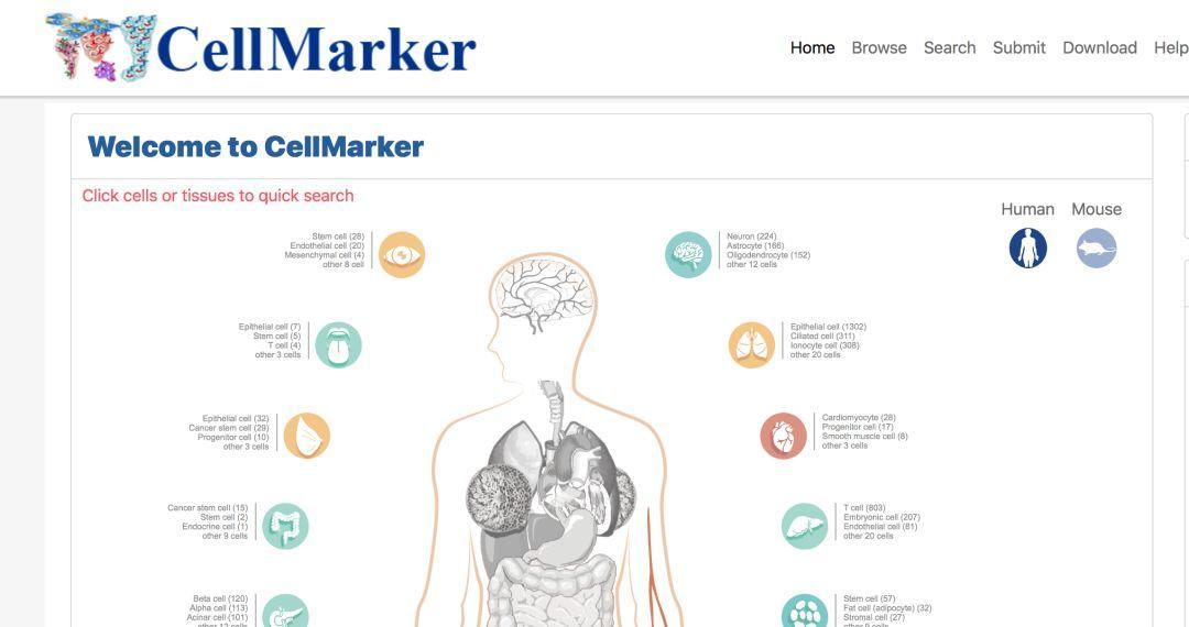 CellMarker细胞标志物(Marker)数据库-sci666