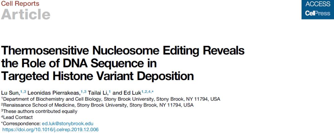 核小体的编辑具有温度敏感性 DNA序列在组蛋白变体的组装过程中起重要作用-sci666