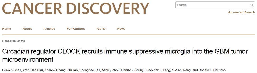 陈佩文博士等揭示双重调控胶质瘤干细胞及肿瘤免疫的分子机制