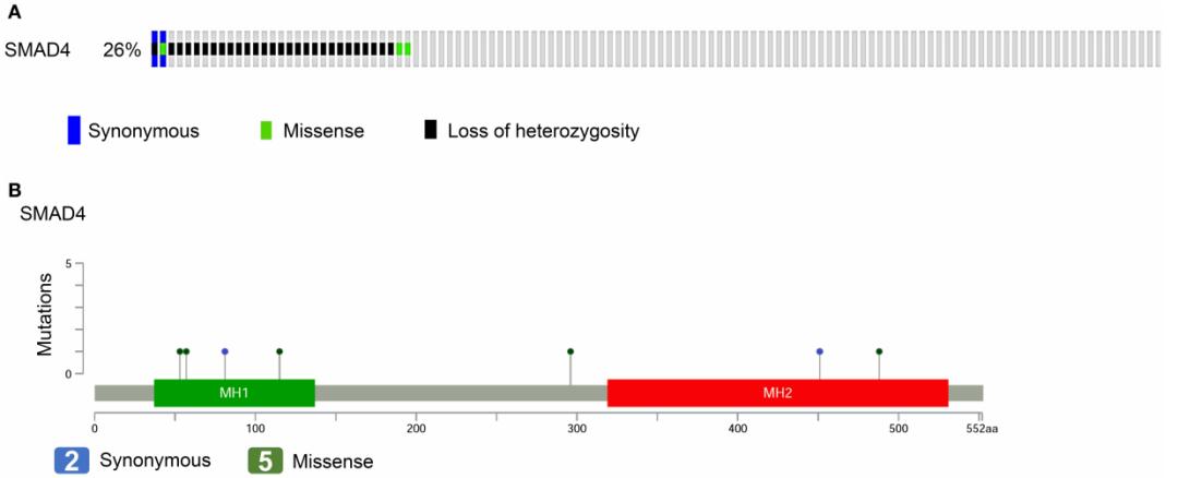 文献解读:头颈鳞癌单基因突变-sci666