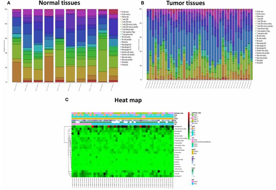 文献解读:HNC的免疫浸润模式及其临床意义-sci666