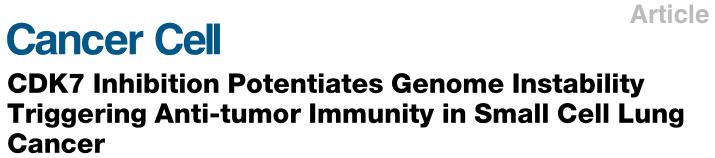 文献解读:免疫治疗研究