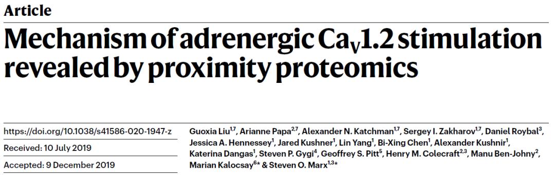 刘国霞博士等利用临近蛋白标记蛋白质组学揭示在应激反应过程中电压门钙通道的分子机制-sci666