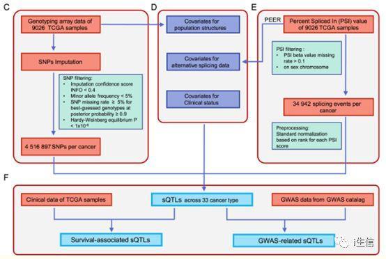 CancerSplicingQTL:人类全基因组鉴定癌症剪接数据库-sci666