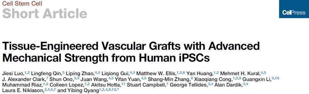 罗捷思博士等首次使用人类诱导多能干细胞成功制备出高机械强度组织工程血管移植物-sci666