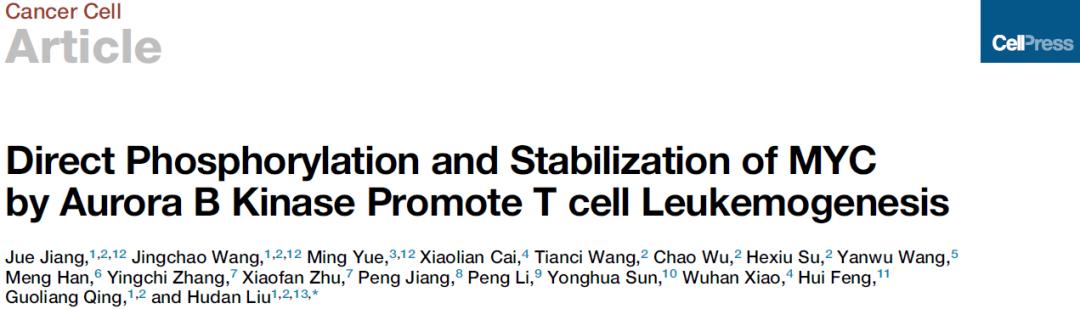 刘胡丹团队揭示急性T淋巴细胞白血病发病机制及潜在治疗策略