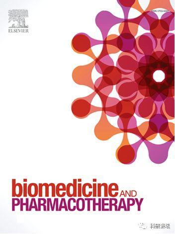 Biomedicine & Pharmacotherapy影响因子3分