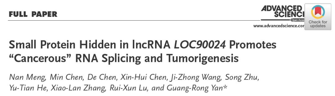 """晏光荣团队发现隐藏在lncRNA中的小蛋白调控了转录因子RNA """"癌性""""剪切"""