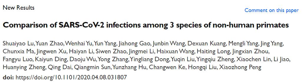 中国科学家建立了SARS-CoV-2非人灵长类动物感染模型