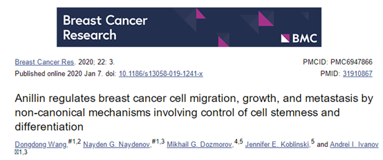 如何在肿瘤课题中加点肿瘤干细胞研究