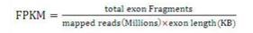 生信分析时常用的数据格式