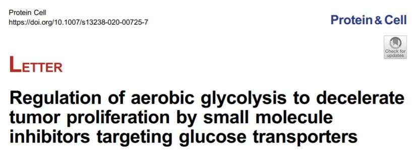 尹航组通过靶向葡萄糖转运蛋白调控肿瘤细胞的有氧糖酵解