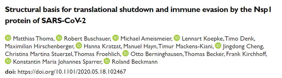 SARS-CoV-2的Nsp1蛋白干扰翻译并实现免疫逃逸的结构基础