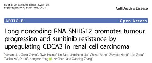 肿瘤研究的lncRNA课题设计思路