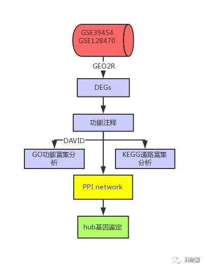 GEO数据集进行鉴定DEGs功能、注释以及PPI网络构建最后筛选新靶标