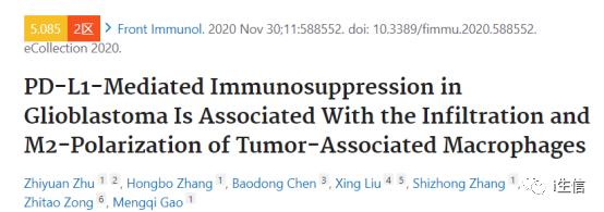 胶质母细胞瘤中PD-L1介导的免疫抑制与肿瘤相关巨噬细胞的浸润和M2极化相关