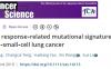 文献解读:免疫治疗+疗效Biomarker