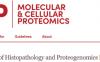 一文献一技术路线:病理形态学+蛋白组学