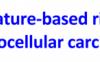 基于四个甲基化mRNA标记物的风险评分系统预测肝细胞癌患者的生存