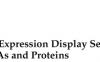 利用GEDS分析基因、miRNA和蛋白的表达使用方法步骤