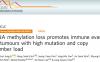 文献解读:甲基化水平的缺失和免疫治疗反应的关系