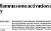 Nature文献解读:NLRP3炎症小体与tau蛋白磷酸化的关系