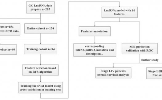 文献解读:胃癌预后-lncRNA的支持向量机模型
