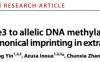 张毅组阐明体细胞DNA甲基化差异在非经典基因组印迹中的作用
