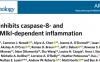 文献解读:PTPN6缺陷后细胞凋亡和细胞坏死显著增加