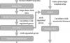 应用深度学习和网络算法对m6A功能及其疾病关联性的系统分析