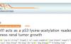 p53蛋白乙酰化新的重要调控机制
