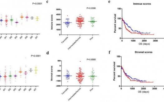 文献解读:急性粒细胞白血病纯生信分析高分文章研究思路