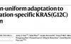癌细胞对KRASG12C抑制剂存在快速耐受性