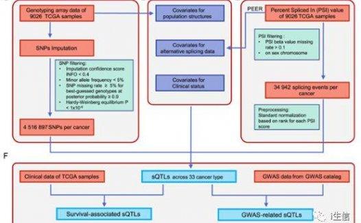 CancerSplicingQTL:人类全基因组鉴定癌症剪接数据库