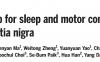 黑质:睡眠和运动控制的共同中枢
