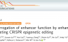 增强子功能研究新利器 增强子靶向表观基因组编辑技术