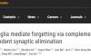 """谷岩/王朗团队揭示大脑中的免疫细胞竟是记忆遗忘的""""主谋"""""""