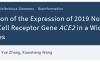 新冠病毒受体ACE2在31个人体组织的表达及其与免疫信号的关联