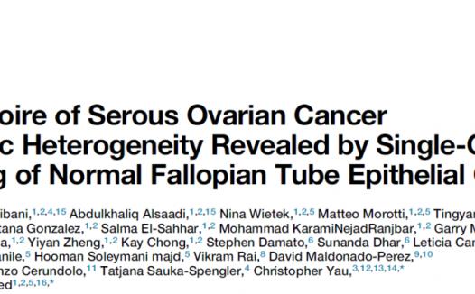 胡致远等利用单细胞深度测序发现卵巢癌不良预后亚型