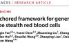 """浙大团队研制出""""通用熊猫血"""":不需要RhD血型匹配即可应急输血"""