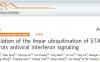郑慧团队发现线性泛素化调控IFN抗病毒信号的新机制